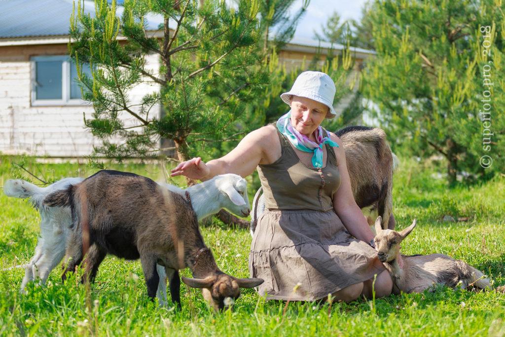 Съёмка с ручными животными на живописной территории