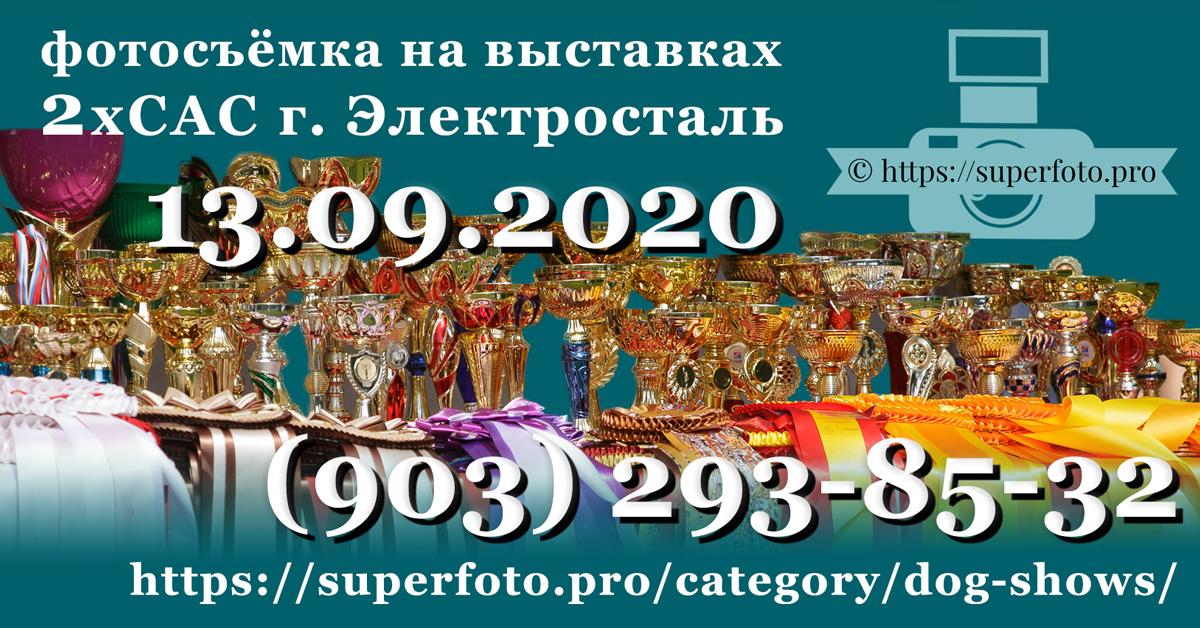 фотосъёмка на выставках в г. Электросталь 13.09.2020