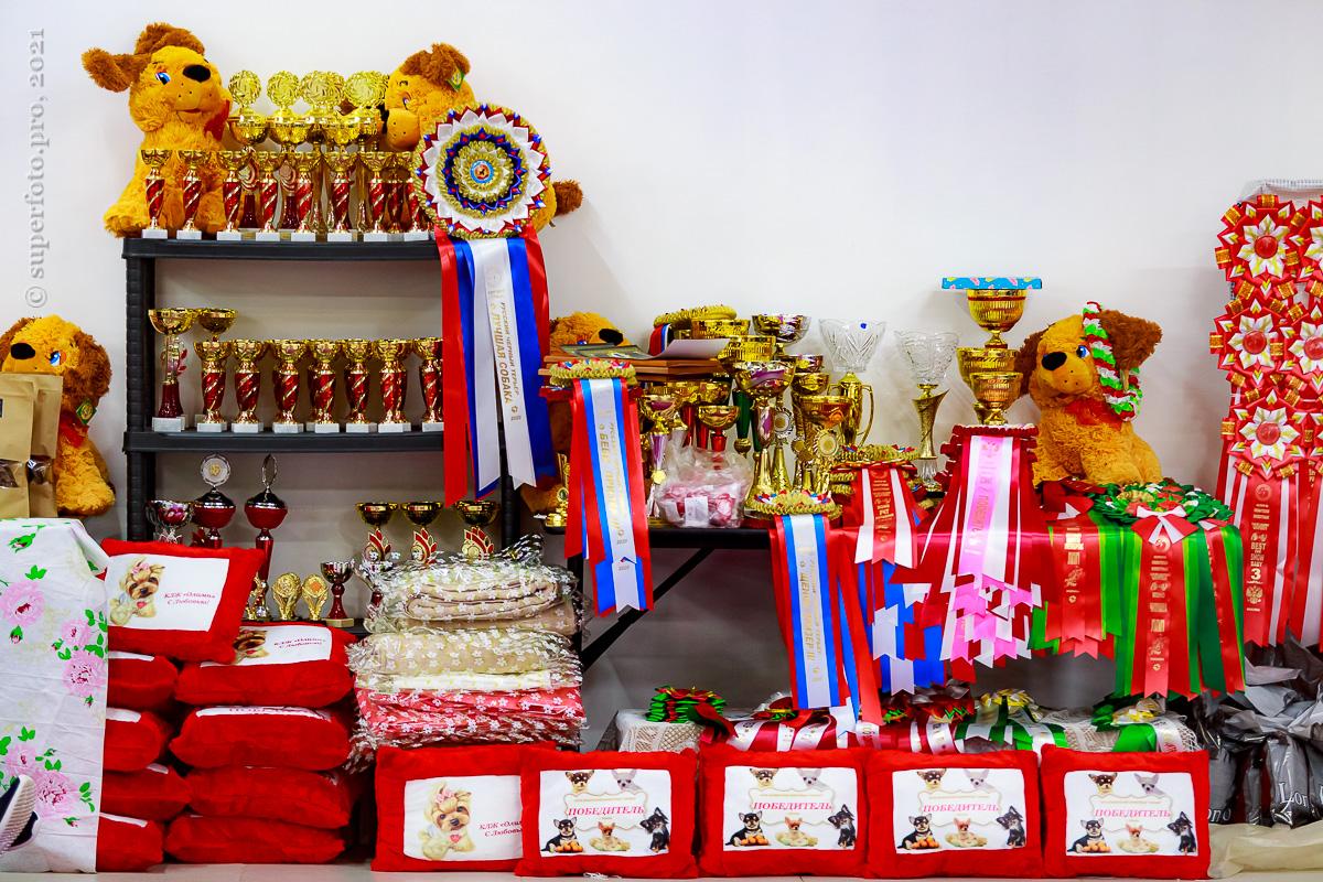 Призовой фонд монопородных выставок клуба «Олимп»