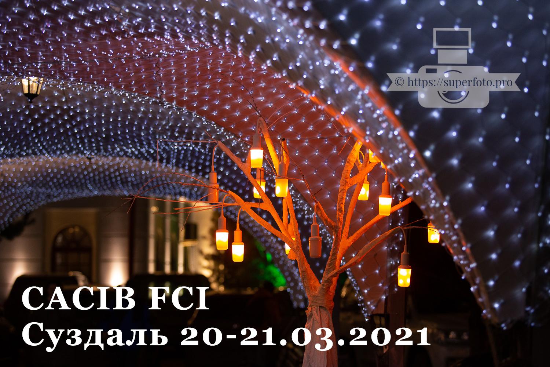 CACIB FCI Суздальский Сокол 21.03.2021