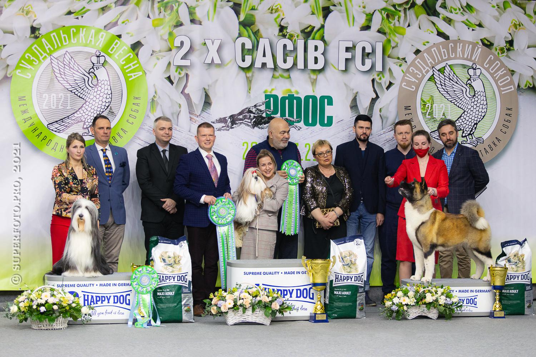 Приобрести фото с выставки CACIB FCI в Суздале 20.03.2021