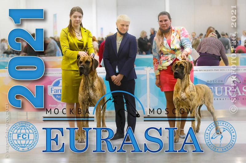 «Евразия 2021» (CACIB FCI, Москва)