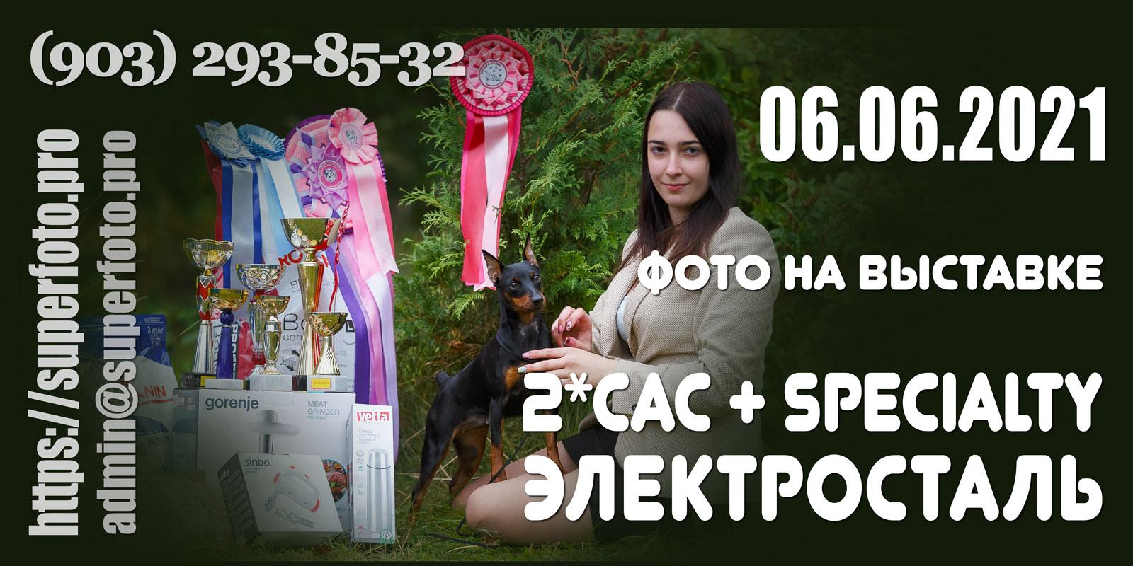 Фото на выставках в Электростали