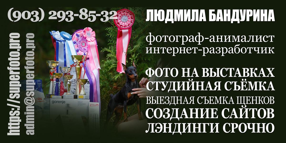 Фотограф-анималист Людмила Бандурина